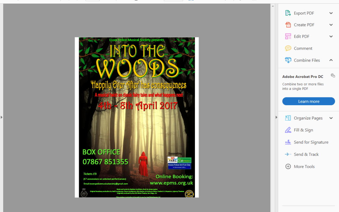 Our Star Jess performs in 'Into The Woods'