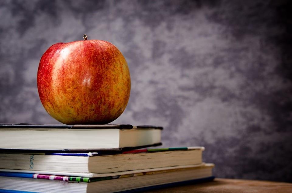 UPDATE – Gender Segregation in Schools
